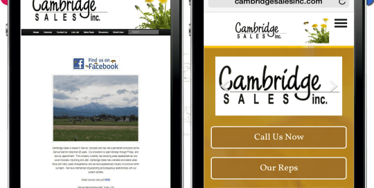 Cambridge Sales Inc website makeover by REXP